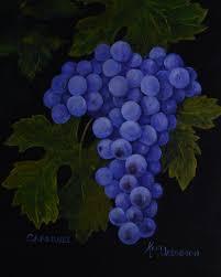 grapes paintings of grapes cabernet grapes kitchen decor