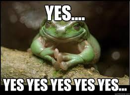 Yes Yes Yes Meme - yes yes yes yes yes yes evil plotting frog quickmeme