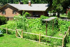 Fencing Ideas For Small Gardens Fall Fence For Vegetable Garden Vegetable Garden Fence Cheap For