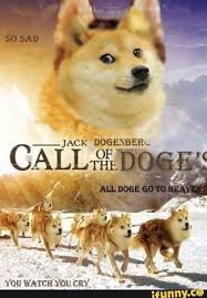 What Breed Is Doge Meme - wow this is doge doge doge meme and shiba