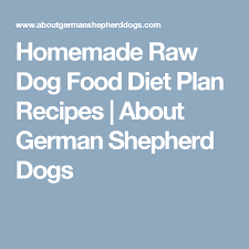 homemade raw dog food diet plan recipes about german shepherd