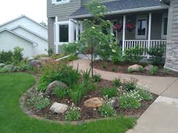 cool trees front yard landscape with small tree ideas and green bush ideas