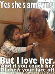 Yes This Is Dog Meme - little girl and pet dog funny pictures quotes memes funny