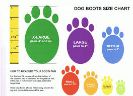 american eskimo dog growth chart rubber dog boot