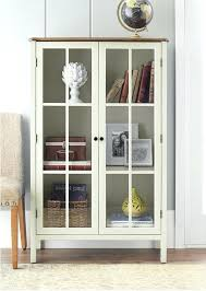 Wall Mounted Display Cabinets With Glass Doors Cabinet In Living Room Splendid Design Inspiration Cabinet Living