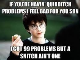 Harry Potter Birthday Meme - 18 jokes only harry potter fans will find funny