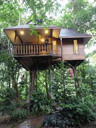 bonding with nature treehouse tree houses and treehouses