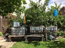 backyard aquaponics in the netherlands u2013 age of awareness u2013 medium