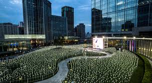 rooftop garden 25 000 led roses light up for love in china