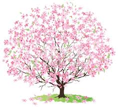 japanese cherry blossom tree clipart clipartxtras