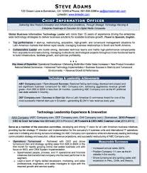 It Executive Resume Examples Cto Resume Examples Related Resumes Download Good Resume Samples