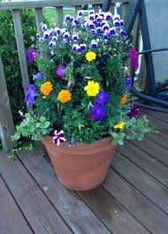 Home Depot Flower Projects - home depot potting project commercial actress home decor ideas