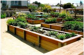 Raised Container Garden Brown Wooden Raised Planter Box Plans In A Simple Design Living