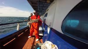 deep sea fishing gloucester ma youtube