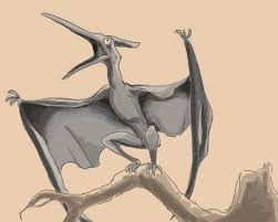 september 16th dinosaur week day 1 pterodactyls sketchdaily