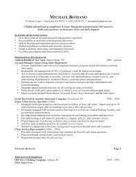 Sales Executive Resume Template Sample Advertising Resume Sample Resume Advertising Sales