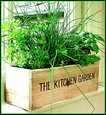 creating an indoor herb garden