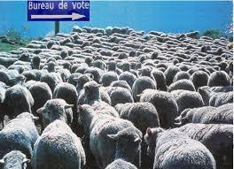 changement bureau de vote changement bureau de vote 20 images quot les républicains quot