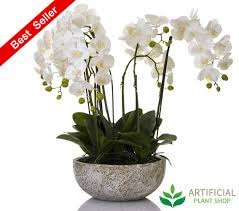 artificial orchid in clay pot 62cm