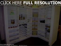12 Inch Deep Pantry Cabinet Freestanding Pantry Remarkable Home Design