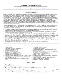 resume template professional designations and areas insurance broker resume template free resume templates
