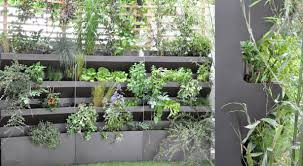 vertical vegetable garden rises in style urban gardens
