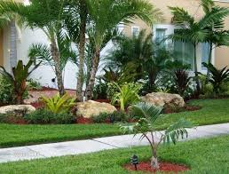 Florida Front Yard Landscaping Ideas 106 Best Front Yard Florida Images On Pinterest Beach Gardens