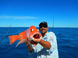 large nannygai picture of renegade fishing charters
