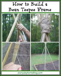 how to build a bean teepee frame the everyday home