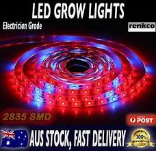 12v dc led grow lights led strip grow lights electrician grade 2835 smd ip65 waterproof 12v
