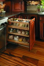Roll Out Spice Racks For Kitchen Cabinets 38 Best Storage Solutions Images On Pinterest Storage Solutions