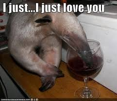 Me Love You Long Time Meme - animal capshunz me love you long time funny animal pictures