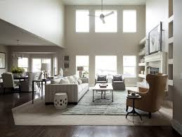 furniture cozy living room home furniture matched with bright
