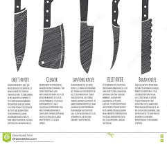 type of kitchen knives types of kitchen knives stock vector image 71951048