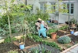 triyae com u003d ideas for backyard vegetable garden various design