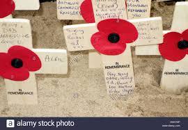 british remembrance poppy on cross stock photos u0026 british