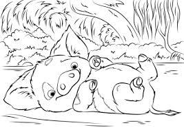 pua pet pig from moana coloring page free printable coloring pages