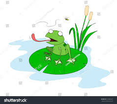 frog on lily pad hand drawn stock vector 374869447 shutterstock