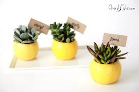 diy lemon place cards everyday dishes