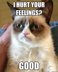 Hurt Feelings Meme - i hurt your feelings cat meme cat planet cat planet