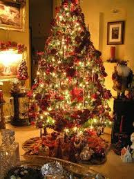7 types of christmas trees and what they say about you christmas