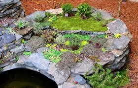 Mini Rock Garden Miniature Garden Spotlight S Miniature Worlds The Mini
