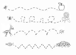 free worksheets bug worksheets free math worksheets for