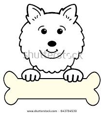 american eskimo dog vector american eskimo dog cartoon stock illustration 643784539