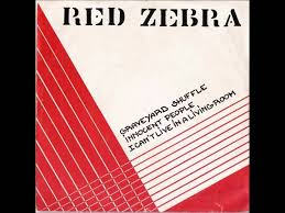 red zebra i can u0027t live in a living room youtube