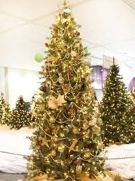 Decorated Christmas Trees by 25 Beautiful Christmas Tree Decorating Ideas
