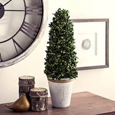 Real Topiary Trees For Sale - topiaries artificial trees kirklands