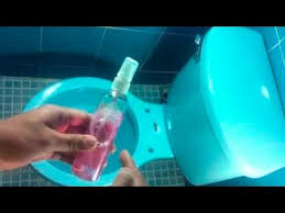 Bad Smell In Bathroom Eliminate Bad Smell In The Bathroom With This Homemade Trick Youtube
