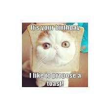 Cat Happy Birthday Meme - 150 happy birthday memes dank memes only