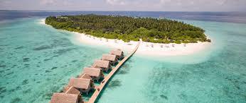 furaveri island resort u0026 spa meedhoo maldives